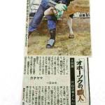 カタヤマさんが北海道新聞に紹介されました